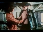 vintage gay cowboys movie