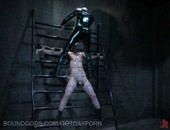 Master Wolf Hudson traps slave nomad in his dungeon. After manhandling the boy, Master Wolf throws him in the steel pit, then urinates on him like a canine marking his territory. He strings the slave up on the metal rack for a hard flogging and a ball-crushing until nomad pops. Master Wolf then buries nomad