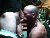Shaun sucking a cock