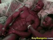 Hot ebony sweet Gay Black Lovers Fucking and Sucking touching thier black cock until they rich the final glory