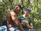 Beefy gay cock sucking in the forest. Hardcore fucking under the tree with nasty cumshot in the end.