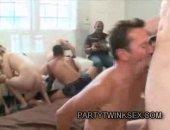 crazy cock sucking orgy
