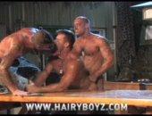 Hardcore Threesome Fuck From THe Hairy Boys.
