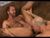 Hairy bear gets some great sex with a young bald guy.