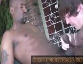a white whore guy sucks on a huge black cock