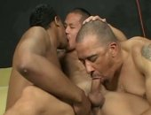 Three Guys Sucking Each Others Cock.