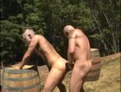some backwoods bears