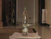 Huge water bottle in my ass