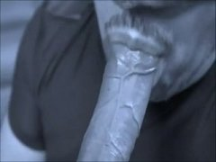 sucking dick in b & w