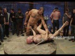 deep pounding a pig bottom