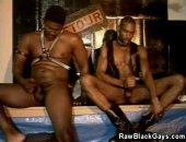 We have this hot black gays in latex as they enjoy each others tight bodies. Watch as they enjoy those cocks and afterwards cum on each others bodies.