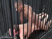 Buster Sly and Chris Khol interracial gay porno 4 by GetRawBreed